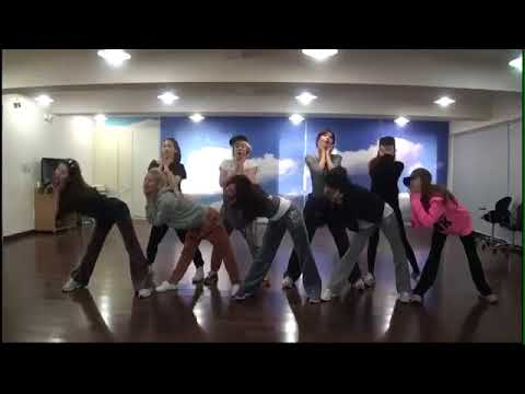 SNSD  I Got A Boy Dance Practice Ver
