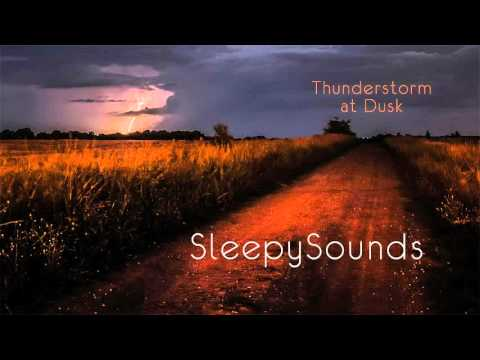 Thunderstorm at Dusk - Audio Recording - 9 hours of rain, thunder and crickets – ambience, sleep