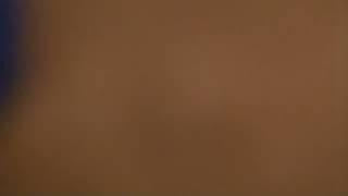 Download St Bernard Pup at 22 weeks old (4)
