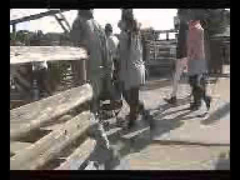 那須りんどう湖レイクビュー 目の前で動物達がダッシュする♪「動物達の帰宅ラッシュ」開催!