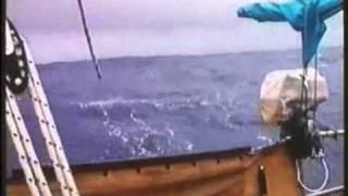 Ritme van de oceaan: terugblik op een zeilreis rond de wereld