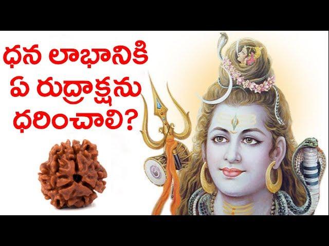 rudrasksha | rudraksha benefits| unknow facts |  rudraksha mantra | latest news | darshanamtv