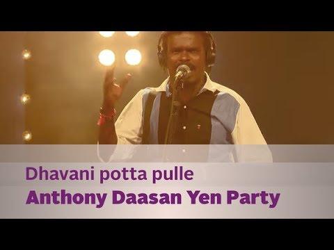 Dhavani potta pulle - Anthony Daasan Yen Party - Music Mojo - Kappa TV