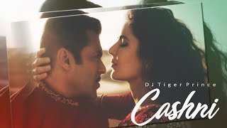 Chashni Song (Official Audio Remix) - Bharat | Salman Khan | Ankita | DJ Tiger Prince