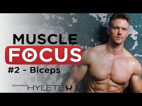 5 Bicep Defining  Exercises - Rob Riches