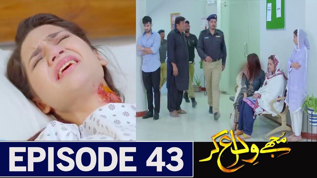 Mujhay Vida Kar Episode 43 Promo - Mujhay Vida Kar New Episode - Mujhay Vida Kar EP 43