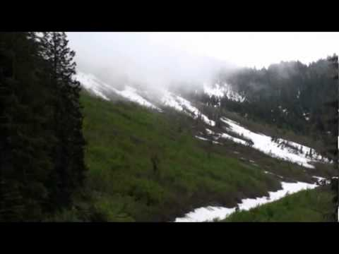 Olympic Natl Forest Expedition 22-29 June 2011 Part 2 of 3