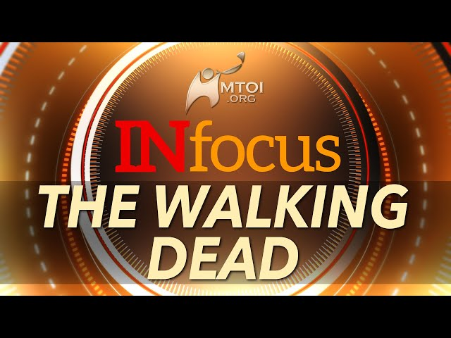 INFOCUS: The Walking Dead