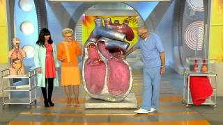 Гипертрофическая кардиомиопатия. Болезнь большого сердца