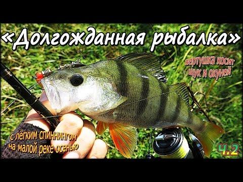 Вертушка косит щук и окуней, с лёгким спиннингом на малой реке осенью - Долгожданная рыбалка - Ч.2