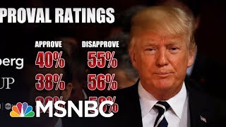 President Donald Trump Approval Numbers Plummet In Polls | Morning Joe | MSNBC
