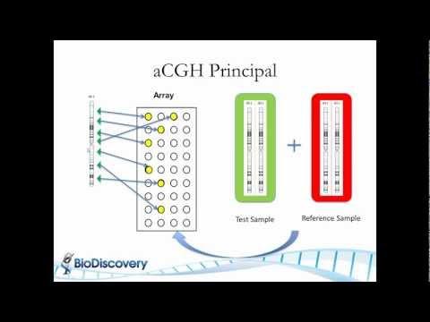 principles of cancer genetics pdf