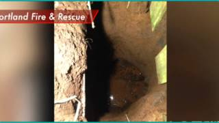 Crazy!  Sinkhole Swallows Women And Dog In Portland Oregon!