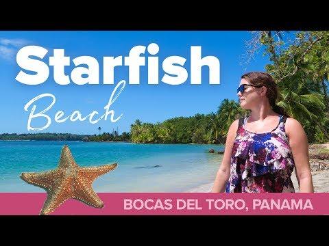 STARFISH BEACH! The Best Beach In Panama.