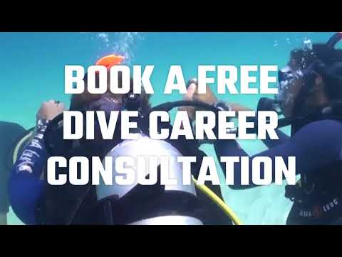 PADI Diving Career Consultation.