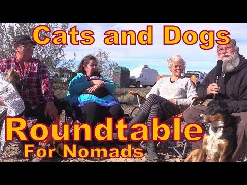 Cats and Dogs: Pet Round-table for Nomads