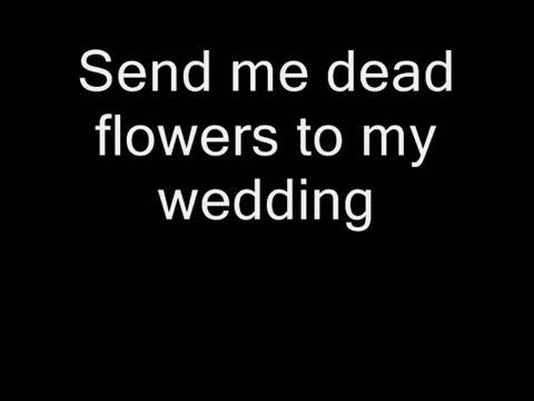 The Rolling Stones - Dead Flowers (Lyrics)