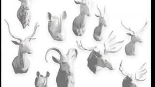 Porcelain Animal Heads   Decorative Picture Set Of Rare & Beautiful Arts