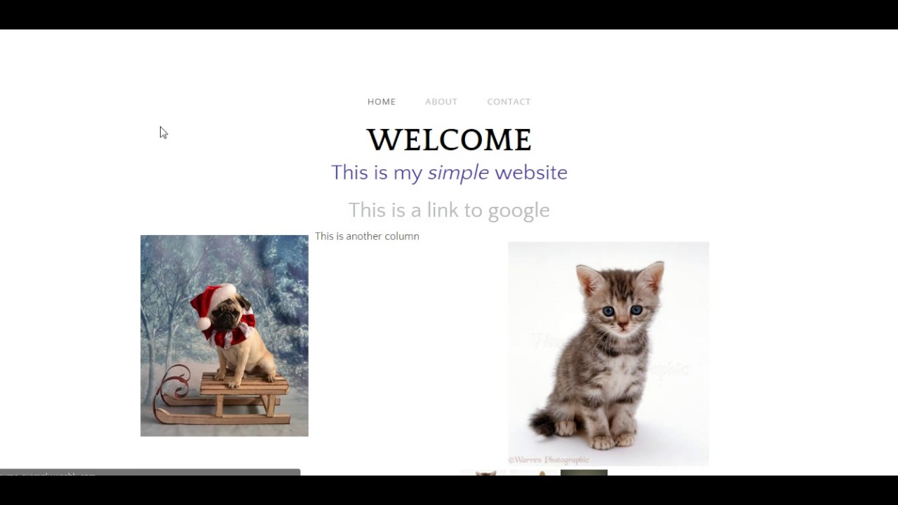 weebly blogs examples
