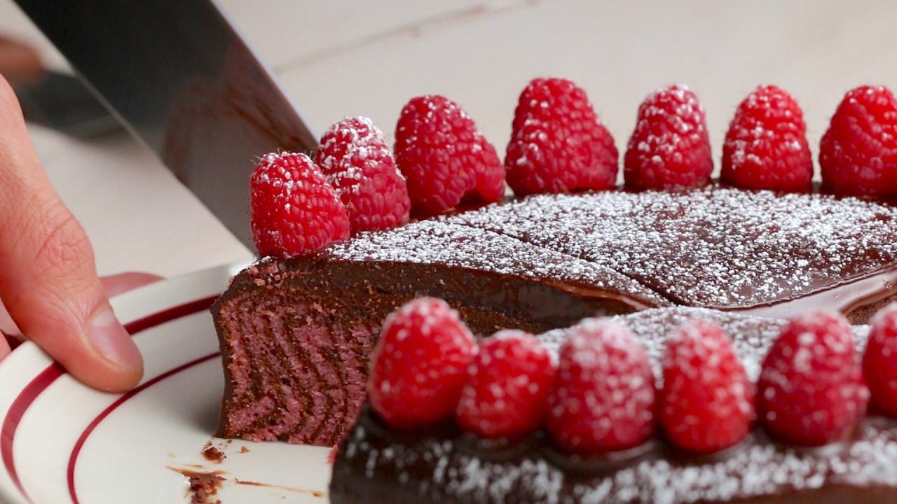 Chocolate Raspberry Zebra Cake YouTube