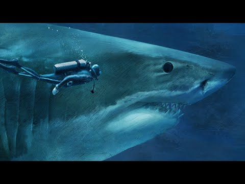 THE BIGGEST SHARK OF THEM ALL! - National Geographic