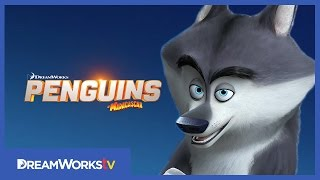 Meet Classified | PENGUINS OF MADAGASCAR