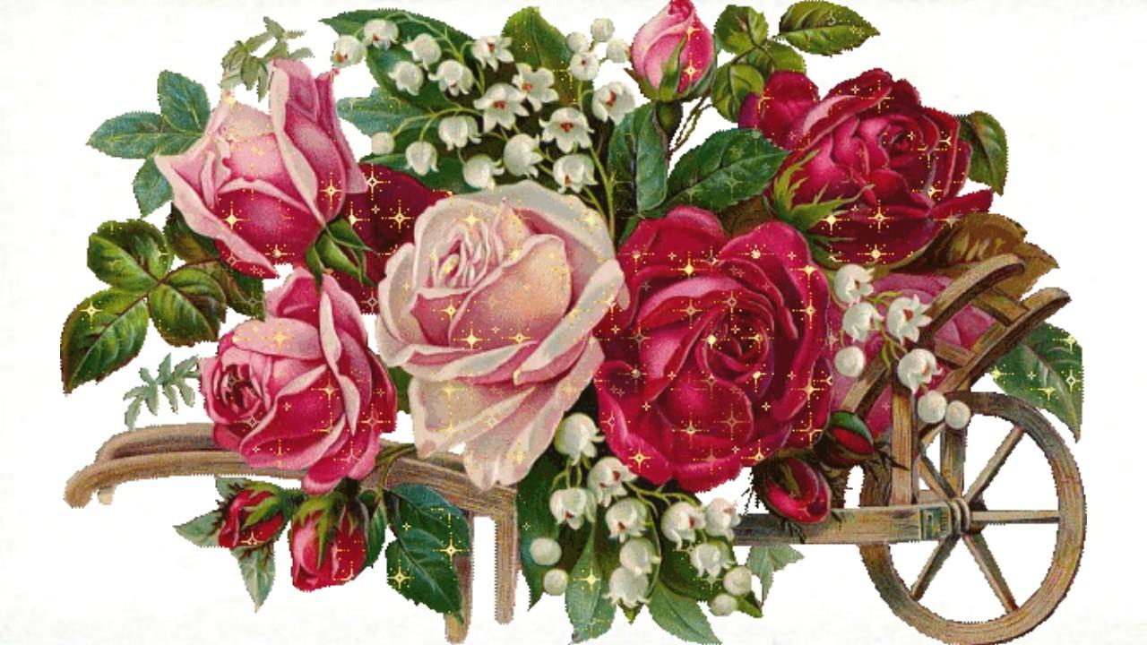 Mensagens Com Flores De Bom Dia: Flores Para Você E Sua Familia