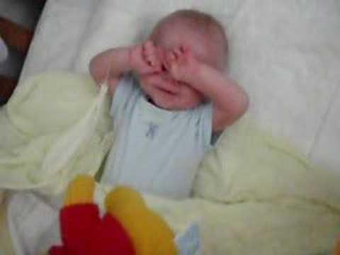 Wakey Wakey Lewis