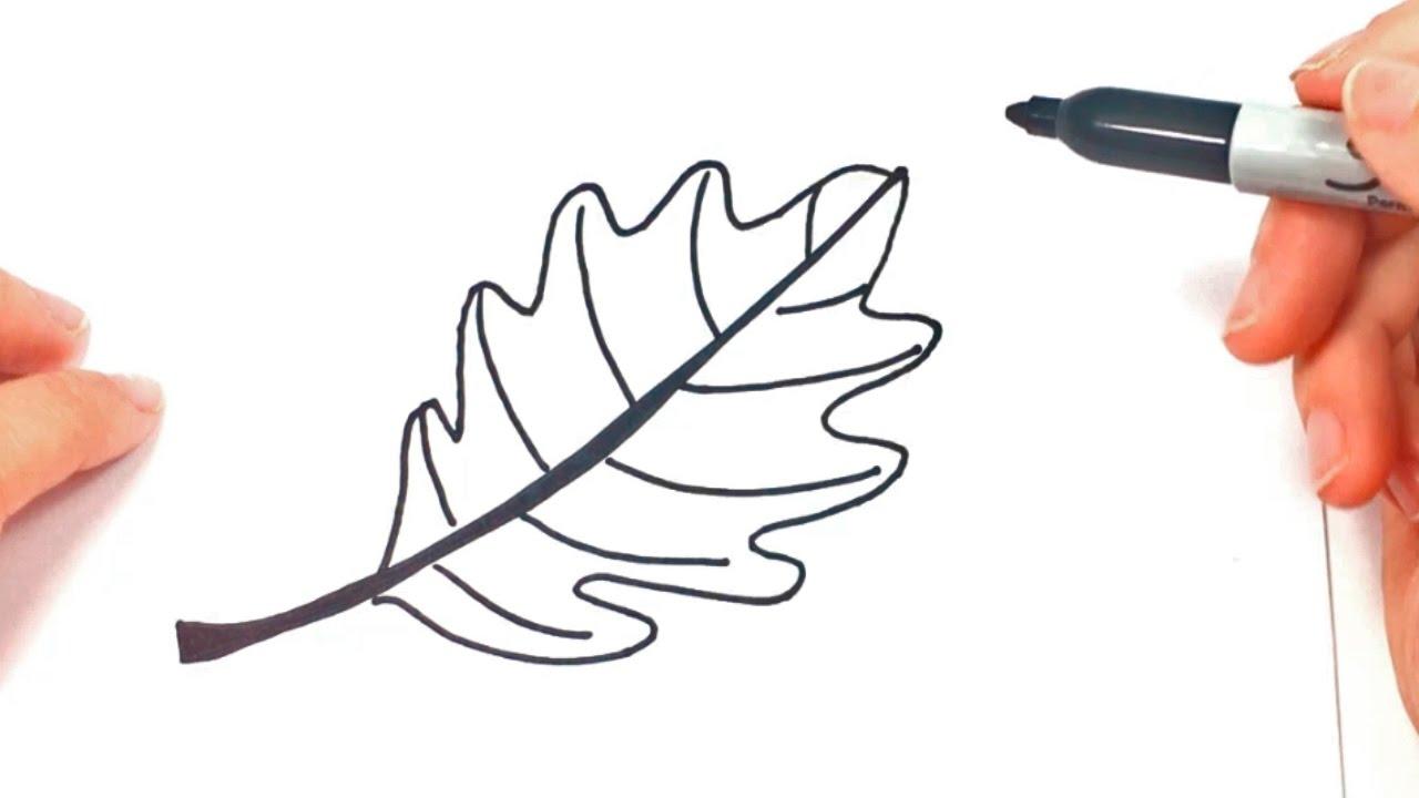 C mo dibujar una hoja de rbol paso a paso dibujo f cil for Comedor facil de dibujar
