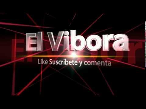 Nueva Intro El Vibora