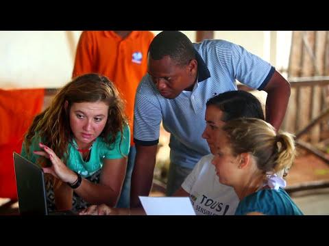 Zanzibar Dolphin & Marine Research Volunteering