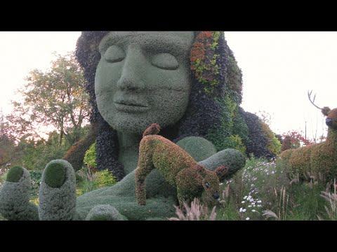 Breathtaking Living Plant Sculptures   Mosaïcultures Internationales De  Montréal   YouTube