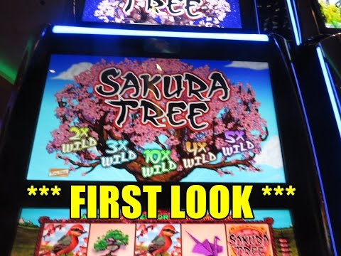 Sakura Tree *** First Look ***