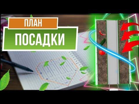 Как распланировать совмещённую посадку овощей и зелени ✔️