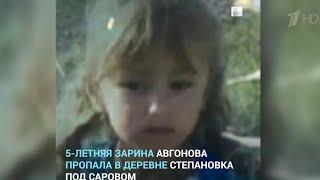 В Нижегородской области увеличена группировка спасателей, которые ищут пропавшую пятилетнюю девочку.