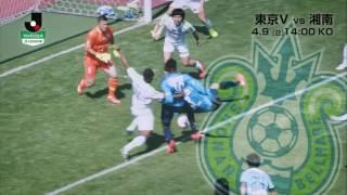 堅守の東京Vか走る湘南か 緑を制するのはどっちだ。明治安田生命J2リ...