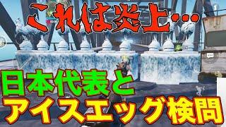 【PUBGモバイル】炎上…プロの日本代表とアイスエッグ検問がヤバすぎるwww【…