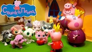Питомец для Свинки Пеппы. Открываем много сюрпризов с кошечками и собачками