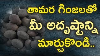 How to worship with Lotus seeds II Remedy for a good fortune and luck