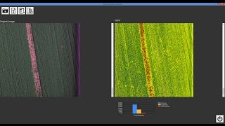 How to generate an NDVI index with AgroSENSE