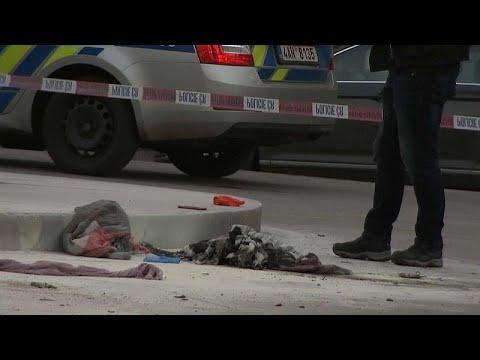 رجل تشيكي يضرم النار في نفسه في إحياء الذكرى الـ50 لربيع براغ…  - نشر قبل 1 ساعة