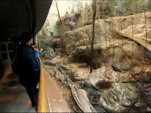Biodome de MONTREAL !!!! Indoor Rainforest HD AMAZING!!!