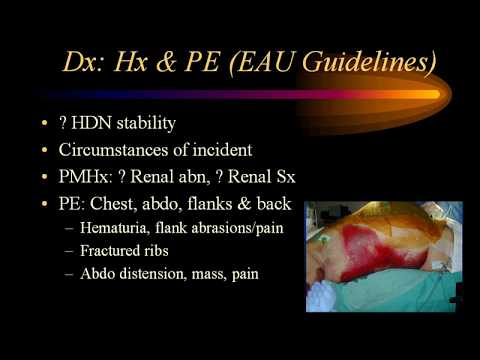 GU Trauma Part Deux: Renal & Ureteral Trauma