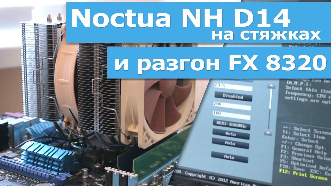 Noctua NH-D14 на стяжках и разгон FX8320