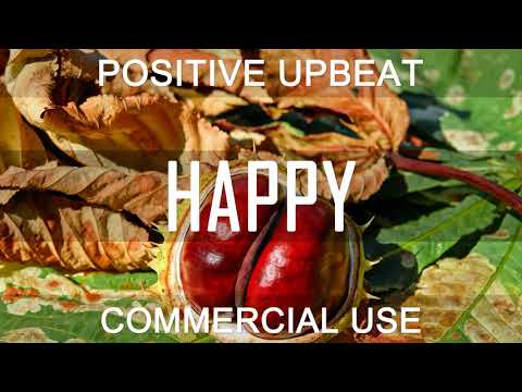 Royalty Free Music - Corporate Upbeat Positive   Wild and Yummy (DOWNLOAD:SEE DESCRIPTION)