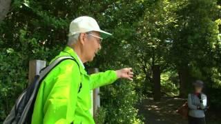 東京の自然環境(2)<まもる>