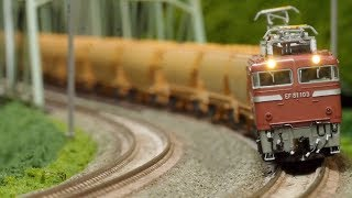 EF81  ホキ2200 穀物輸送列車