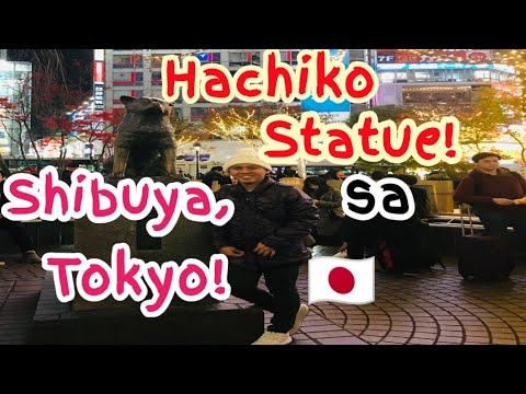 HACHIKO STATUE AT SHIBUYA TOKYO, JAPAN | MEETING HACHIKO THE SECOND TIME AROUND |