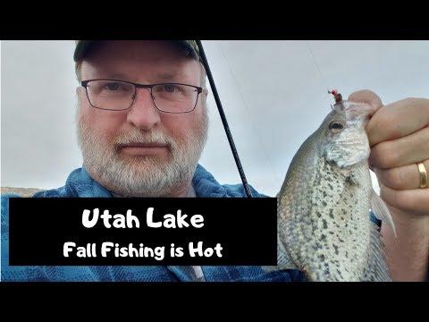 Utah Lake - Hot Fall To Winter Fishing