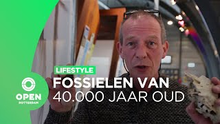 Fossielen van 40 duizend jaar oud op de Tweede Maasvlakte | Lifestyle
